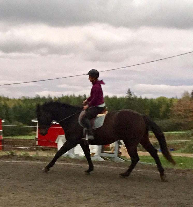 Reaching Strides Equestrian Centre, Port Hood, Cape Breton, Nova Scotia